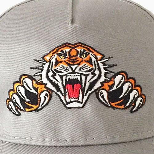 cap-tiger-site